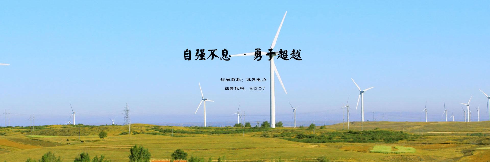 河南电力公司